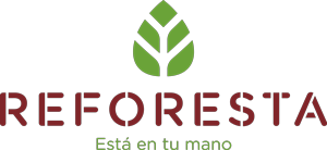 Campaña reforestación Romerohogar